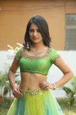 south-indian-actress-nikitha-bisht-496976