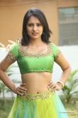 south-indian-actress-nikitha-bisht-518233