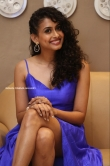 Nithya Naresh at Operation Gold Fish Movie Pre Release Event (12)