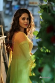nivetha-pethuraj-latest-photo-shoot-stills-19079