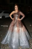 Payal Ghosh at Filmfare Awards South 2018 (4)