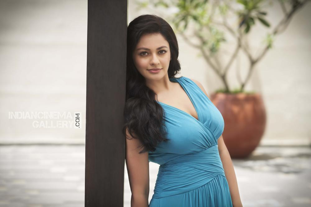 Pooja Kumar photoshoot stills (1)