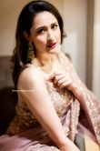 Pragya Jaiswal in Saree dress (13)