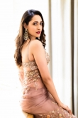 Pragya Jaiswal in Saree dress (19)