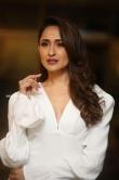 Pragya Jaiswal stills sep 2019 (16)