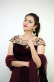 priyanka raman at sakshyam movie audio launch (10)