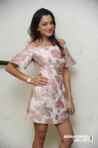 Priyanka Malnad at BMW movie press meet (3)