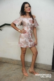 Priyanka Malnad at BMW movie press meet (4)