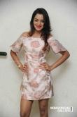 Priyanka Malnad at BMW movie press meet (6)