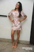 Priyanka Malnad at BMW movie press meet (7)