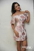 Priyanka Malnad at BMW movie press meet (9)