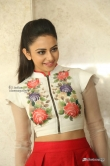 Rakul-Preet-Singh-photos-from-Nannaku-Prematho-Success-Meet--(11)2289