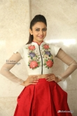 Rakul-Preet-Singh-photos-from-Nannaku-Prematho-Success-Meet--(12)2911