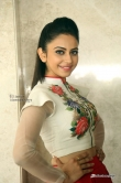 Rakul-Preet-Singh-photos-from-Nannaku-Prematho-Success-Meet--(13)847