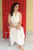 Raashi Khanna latest photos 10.02.20 (10)