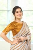 Rashi Khanna at Prati Roju Pandage Movie Thanks Meet (13)