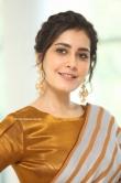 Rashi Khanna at Prati Roju Pandage Movie Thanks Meet (15)