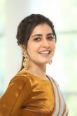 Rashi Khanna at Prati Roju Pandage Movie Thanks Meet (16)
