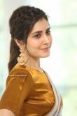 Rashi Khanna at Prati Roju Pandage Movie Thanks Meet (18)