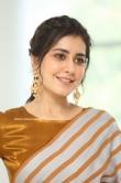 Rashi Khanna at Prati Roju Pandage Movie Thanks Meet (8)