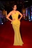 Rashi Khanna at Zee Awards 2019 (5)