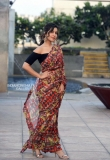 raashi khanna in saree pics (3)