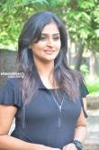 Remya Nambeesan at Sathya Movie Press Meet Stills (55)