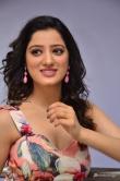 Richa Panai at rakshaka bhatudu pre release function (19)