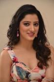 Richa Panai at rakshaka bhatudu pre release function (21)