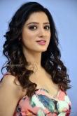 Richa Panai at rakshaka bhatudu pre release function (8)
