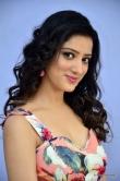 Richa Panai at rakshaka bhatudu pre release function (9)