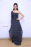Richa Panai in gown stills (10)