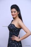 Richa Panai in gown stills (16)