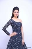 Richa Panai in gown stills (7)
