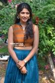 Roshini Prakash at Yemaali Movie Press Meet (5)