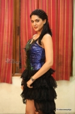 sakshi-chowdary-stills-from-speedunnodu-audio-launch-72323