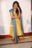 Samyukta Hornad at Marikondavaru press meet (15)