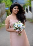 Samyukta Hornad at pearly maaney marriage (5)
