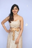 Sanchita Shetty at party movie audio launch (13)