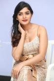 Sanchita Shetty at party movie audio launch (19)