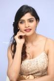 Sanchita Shetty at party movie audio launch (20)