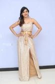 Sanchita Shetty at party movie audio launch (7)