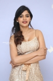 Sanchita Shetty at party movie audio launch (9)