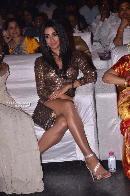 Sanjana Galrani at Shoban Babu Awards 2019 (12)