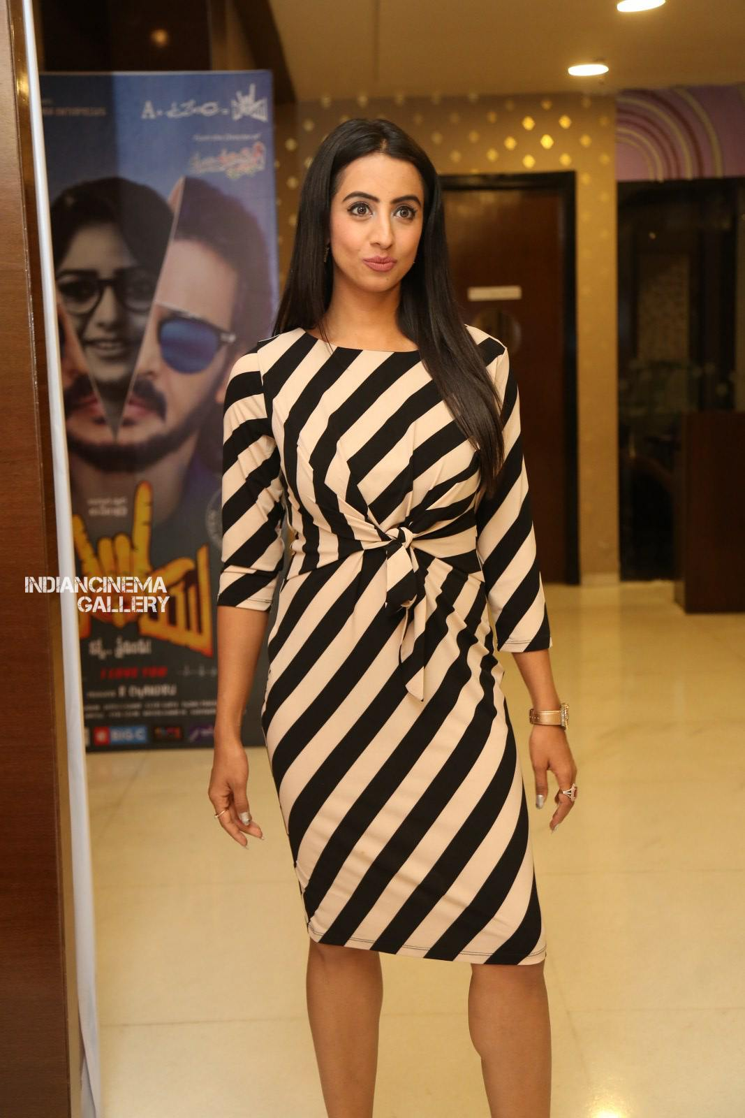 Sanjana Galrani at i love you movie teaser launch (13)