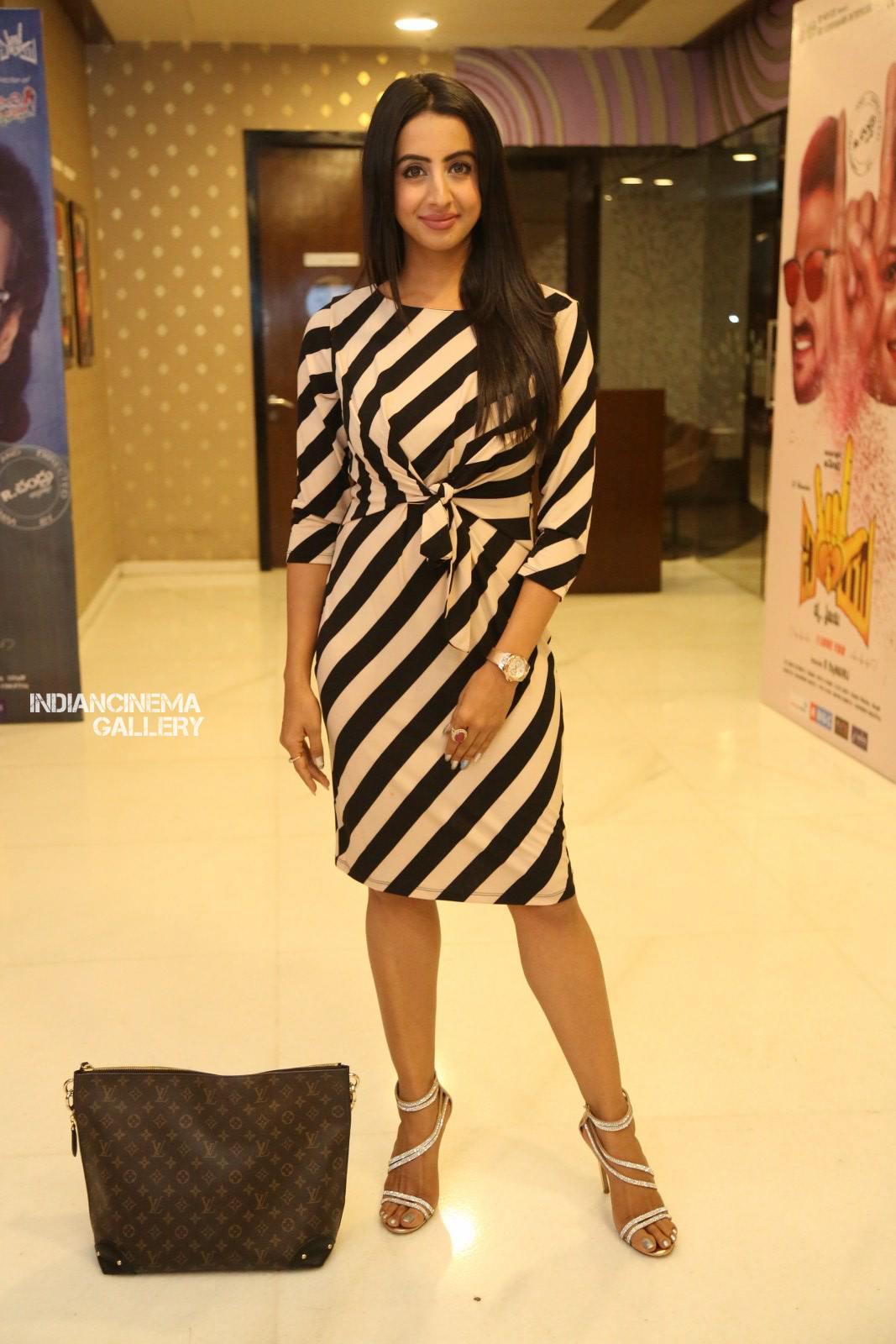 Sanjana Galrani at i love you movie teaser launch (2)