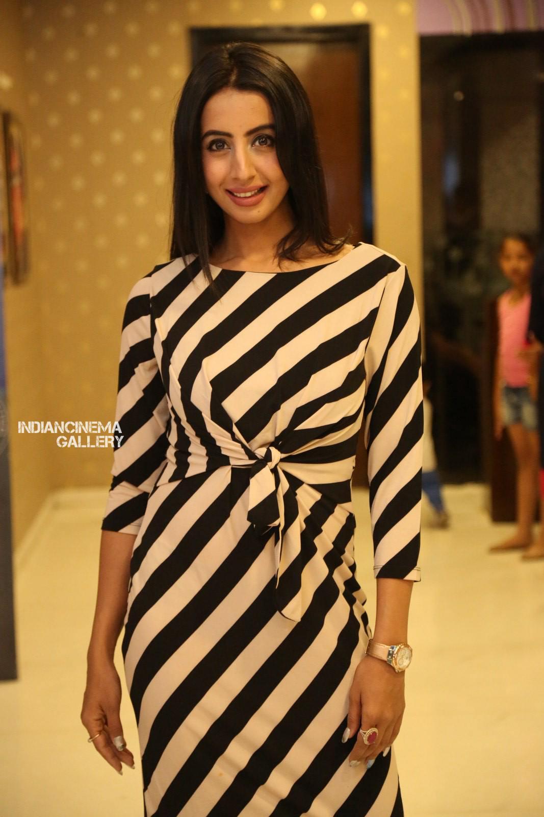 Sanjana Galrani at i love you movie teaser launch (7)