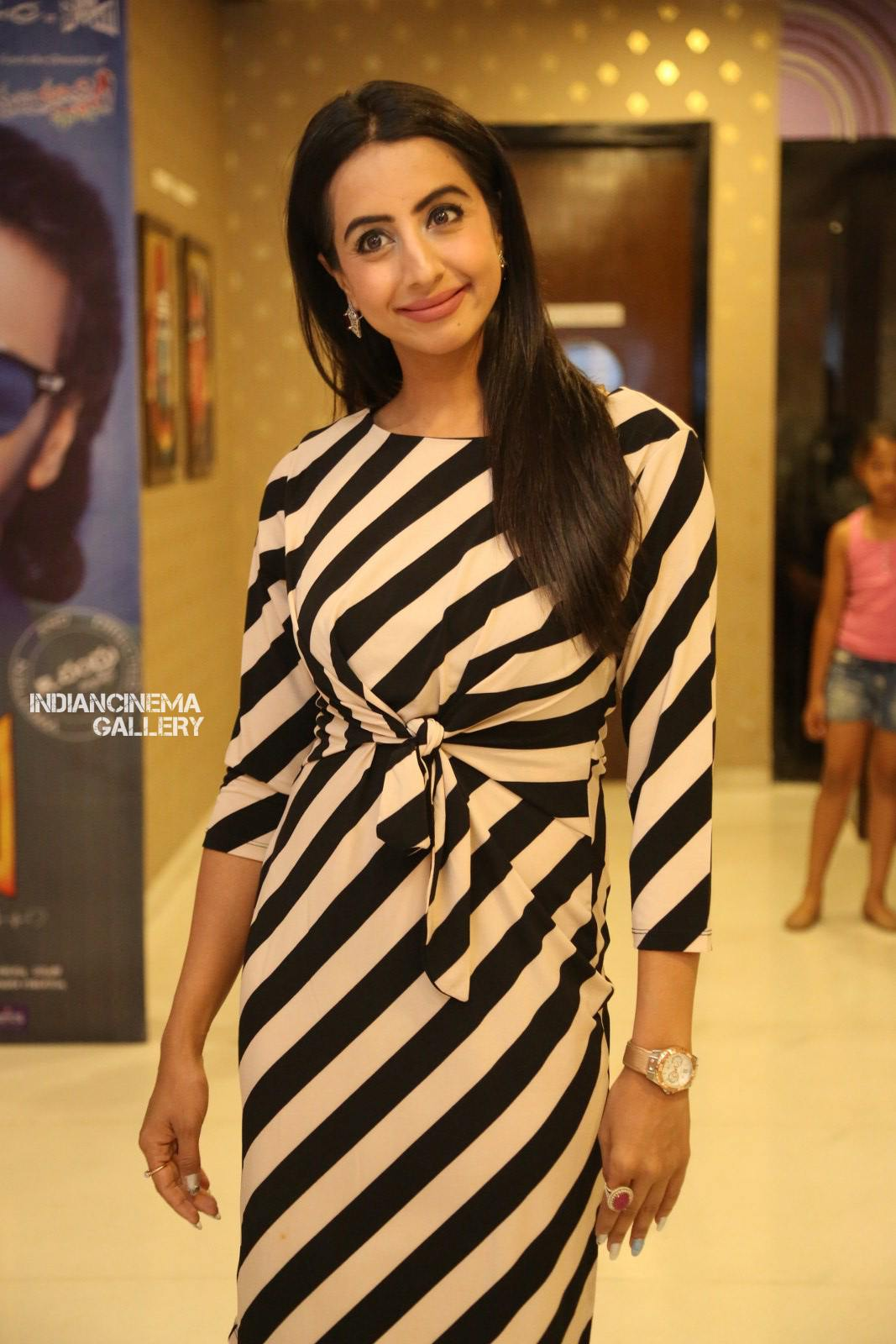 Sanjana Galrani at i love you movie teaser launch (9)