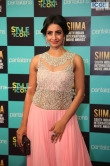 Sanjana at SIIMA Awards 2019 (5)