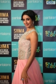 Sanjana at SIIMA Awards 2019 (6)